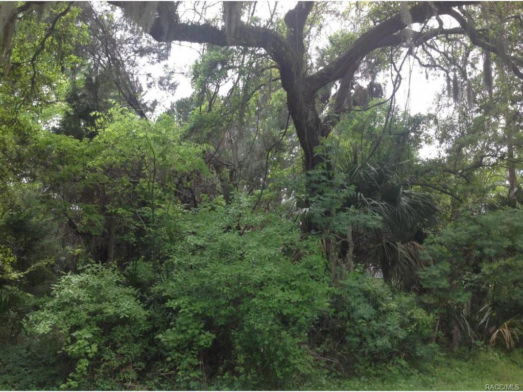 0-Riverside-Yankeetown-FL-34498