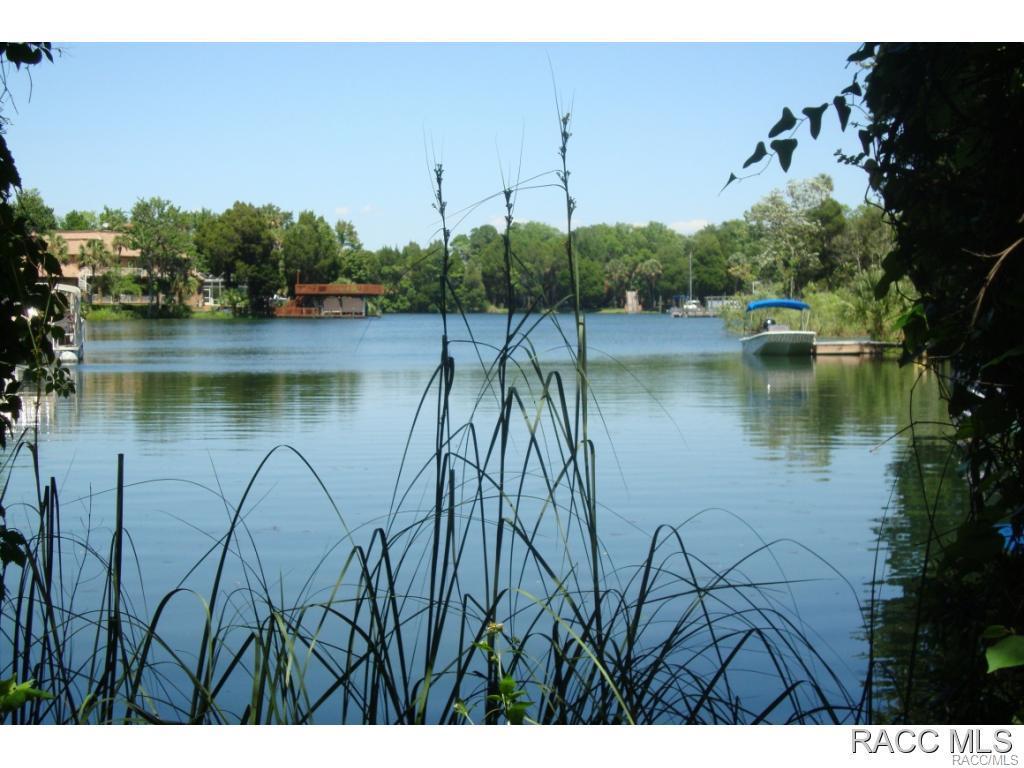1145-Circle-Crystal-River-FL-34429