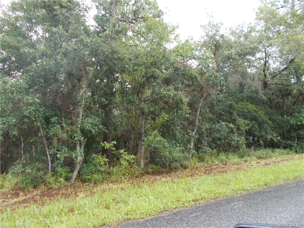 2051-Newhaven-Inverness-FL-34442