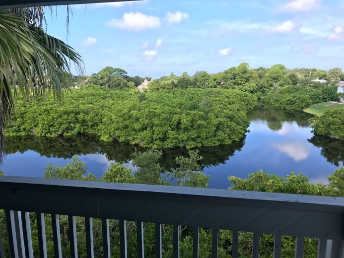 condo for sale by owner in palm harbor